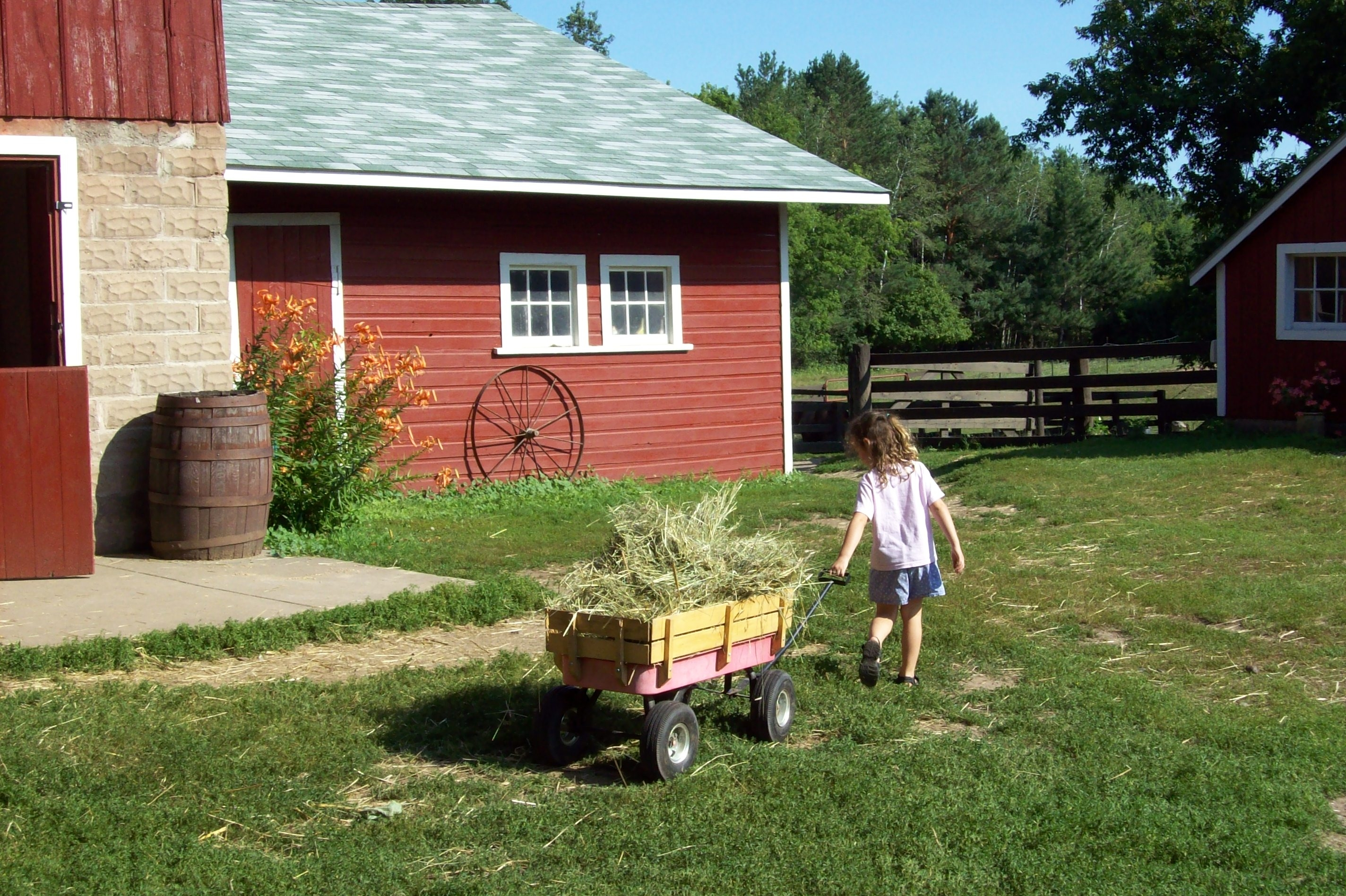 Young child pulling a wagon with hay